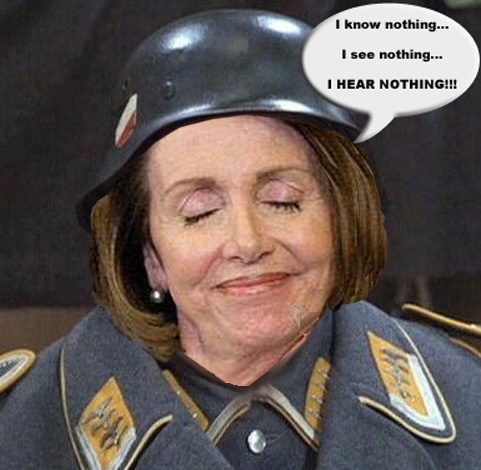 Pelosi clown